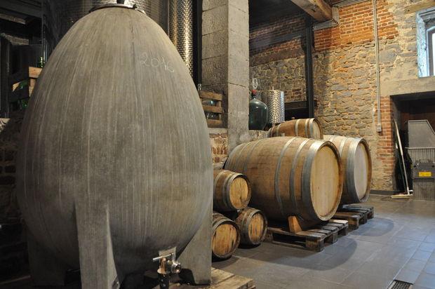 Sur la route des vins wallons