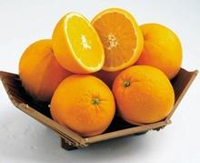 Voici venir le temps des oranges