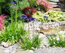 Aménagez un jardin de gravier