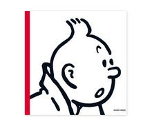 """"""" Musée Hergé """", un nouveau livre"""