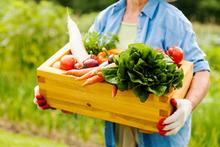 Le top 3 des légumes