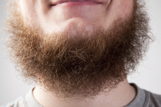 A New York, les hommes s'implantent ... de la barbe