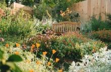 Profitez d'HortidécouVERTES pour embellir votre jardin