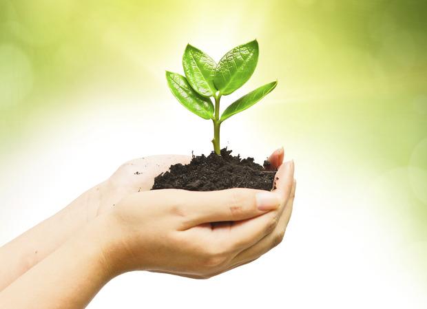 L'environnement, c'est important - Société - Plusmagazine.be