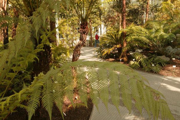 Sept parcs et jardins à visiter en Belgique