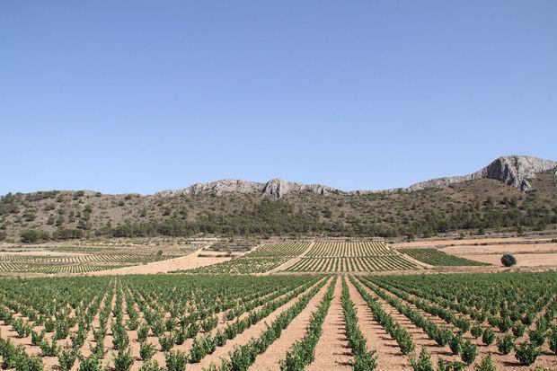 5 raisons de visiter la Costa Cálida