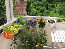 Votre jardin aussi fait sa rentrée !
